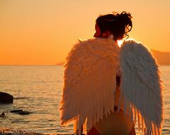 Divine Timing - Angel Wings